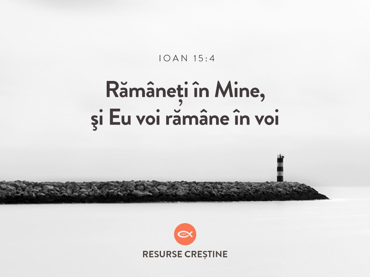 Ioan 15:4